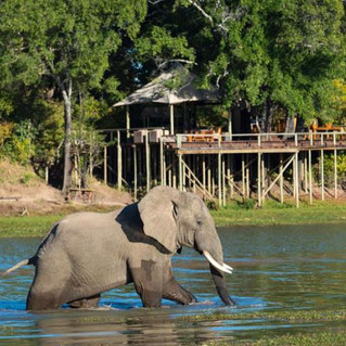 Chindeni South Luangwa