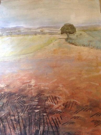 Shropshire Harvest