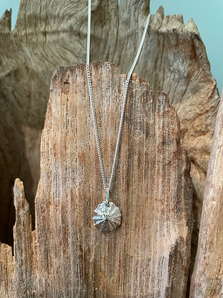 Limpet Shell Sterling Silver Necklace