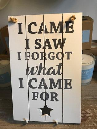 I Came I Saw I Forgot What I Came For Sign