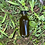 Thumbnail: NLE Neem Oil (Signed)