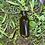 Thumbnail: NLE Neem Oil