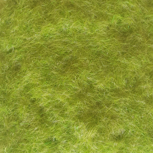 Static Grass Early Growth 3mm Ground Up Scenery 50g