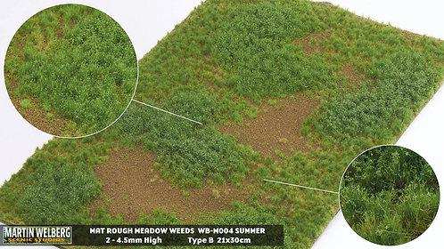Rough Meadow Weeds Summer B Martin Welberg