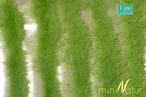 X-Long Grass Strips Spring