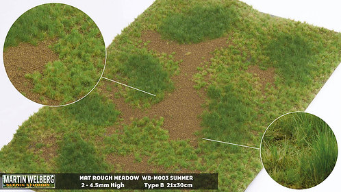 Rough Meadow Summer B Martin Welberg