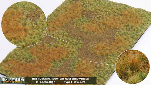 Rough Meadow Winter G Martin Welberg