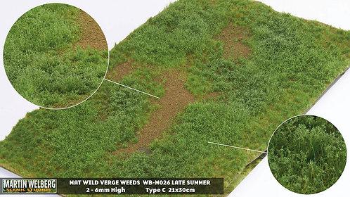Wild Verge Weeds C late summer Martin Welberg
