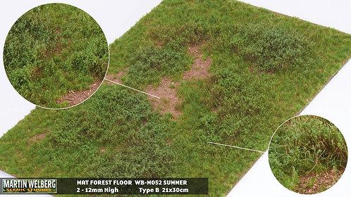 Forestfloor type B Martin Welberg