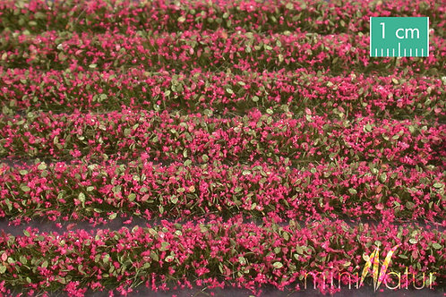 Blossom Strips, magenta
