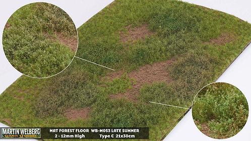 Forestfloor type C Martin Welberg