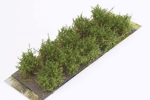 Bushes type D medium green Martin Welberg