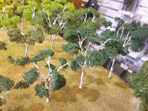 Gum Tree Deep Green 40mm - 150mm