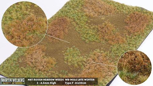 Rough Meadow Winter Weeds G Martin Welberg