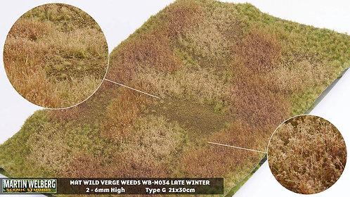 Wild Verge Weeds Winter 2 type G Martin Welberg