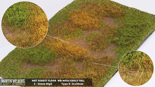 Forestfloor type D Martin Welberg