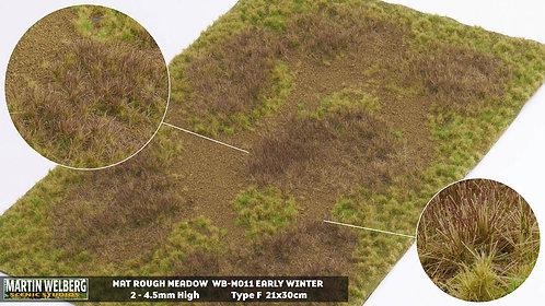 Rough Meadow Winter F Martin Welberg