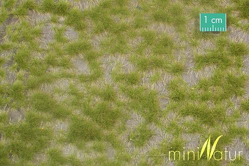 Wild Grass Tufts Spring (4mm)