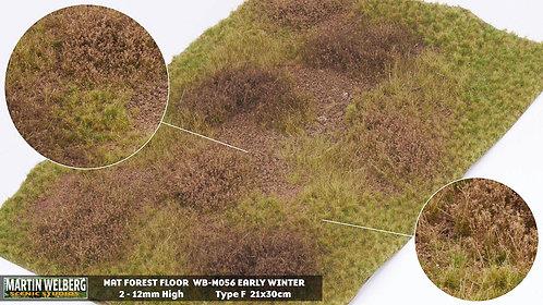 Forestfloor type F Martin Welberg