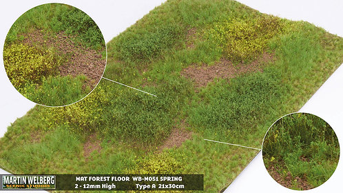 Forestfloor type A Martin Welberg