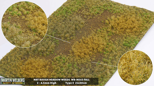 Rough Meadow Weeds Fall E Martin Welberg
