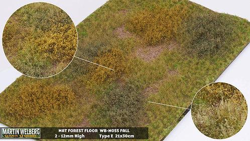 Forestfloor type E Martin Welberg