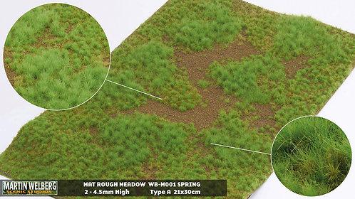 Rough Meadow Spring A Martin Welberg