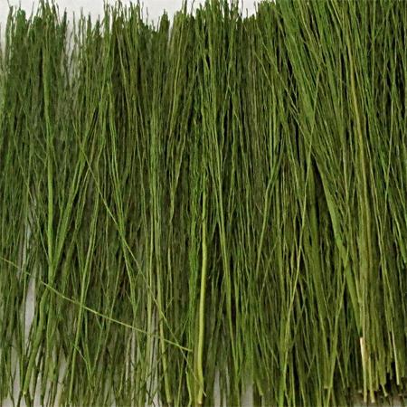 Field Grass Light Green, Bag 15 g MP Scenery