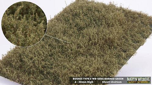 Bushes type E Burned Green Martin Welberg