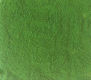 Medium Green Scatter.jpg