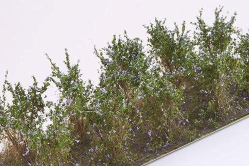 Bushes type C lavender Martin Welberg