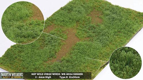 Wild Verge Weeds B summer Martin Welberg