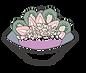 Acai bowl png (2).png