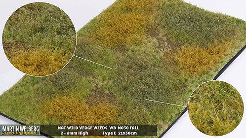 Wild Verge Weeds E fall Martin Welberg