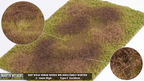 Wild Verge Weeds Winter 1 type F Martin Welberg