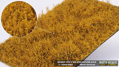Bushes type F Autumn Gold Martin Welberg