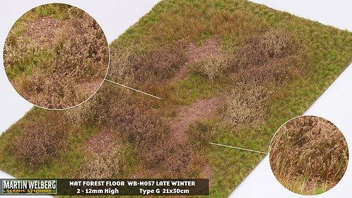 Forestfloor type G Martin Welberg