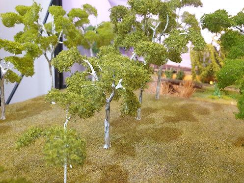 Gum Tree Mix Green 40mm - 150mm
