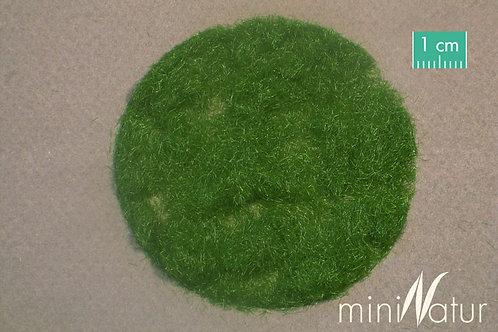 Grass Flocking Summer 2mm