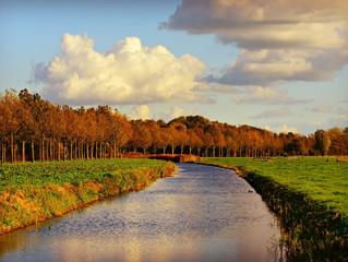 Нідерланди встановлять найбільшу плаваючу сонячну електростанцію в світі!