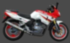 Zs200gs003.jpg