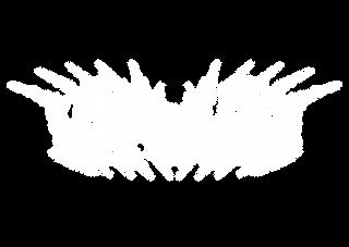 Virvum