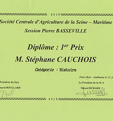 Diplome_Stéphane_Cauchois.jpg