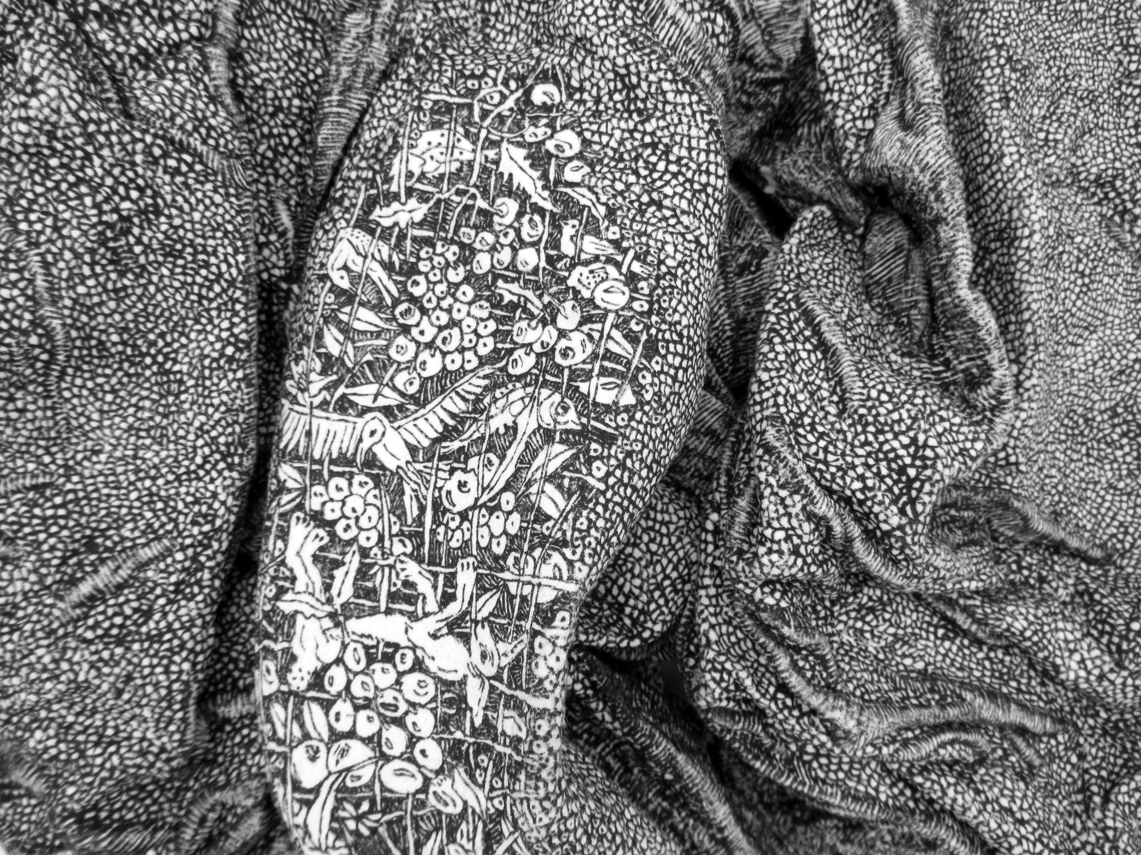 La pierre des tourments N°64,détail