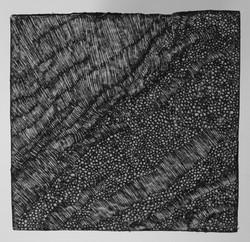 1998-débats nocturbes-N°4-13x13cm