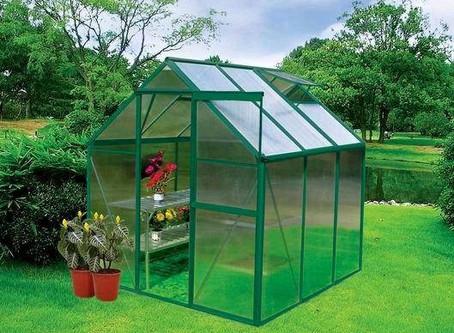 Избор на покритие за оранжерия