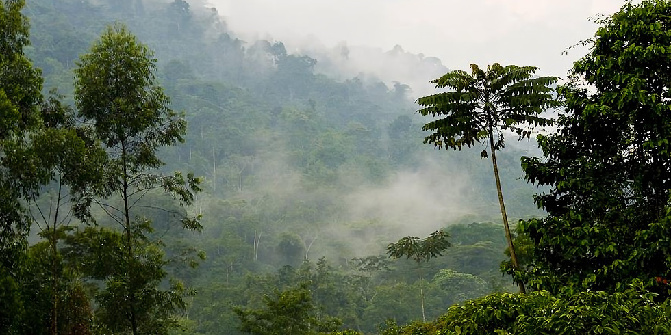 Uganda, Africa - Braving The Wilderness, Quest For True Belonging Experience