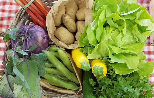 Paniers légumes bio Equalis
