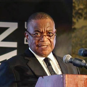 Zimbabwe VP named health minister after Covid-19 scandal