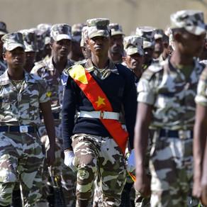 Ethiopia's Tigray crisis worsens as international agencies warn of mass killings and food shortages